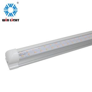 Guangdong Winlight Energy Saving Photoelectric Co Ltd