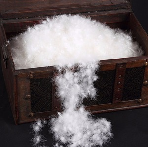 Washed 60% White Goose Down 40% White Goose Feather pictures & photos