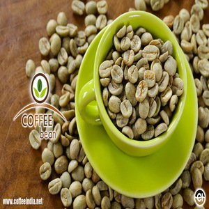 Robusta Green Coffee Bean For Sale Wholesale Coffee Beans