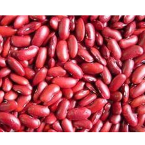 Long Red Wholesale Kidney Beans Small Red Kidney Beans Black Kidney Beans Wholesale Canned Food Products On Tradees Com