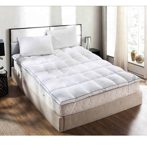2019 Fashion New Style Wholesale Night Sleep Queen Size Down and Warm Soft goose Feather Mattress