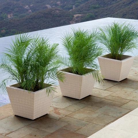 MRPL-0014 Wicker Resin PE Rattan Garden Outdoor Accessories Tree Pots Planters Patio Furniture pictures & photos