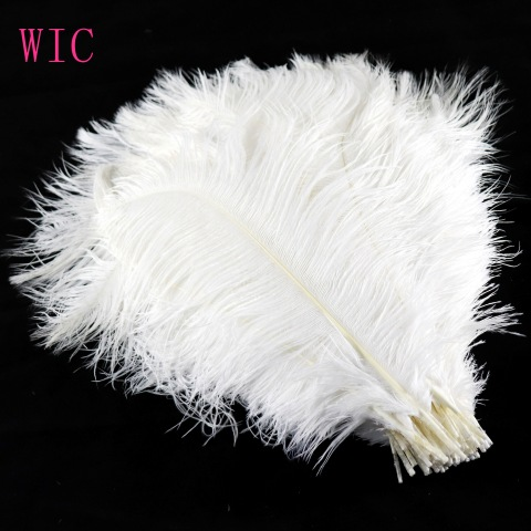 2019 all Sizes Ostrich White Feathers for bridal Decoration pictures & photos
