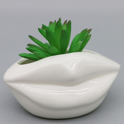 Mini size succulent plant pot ceramic mouth shape design